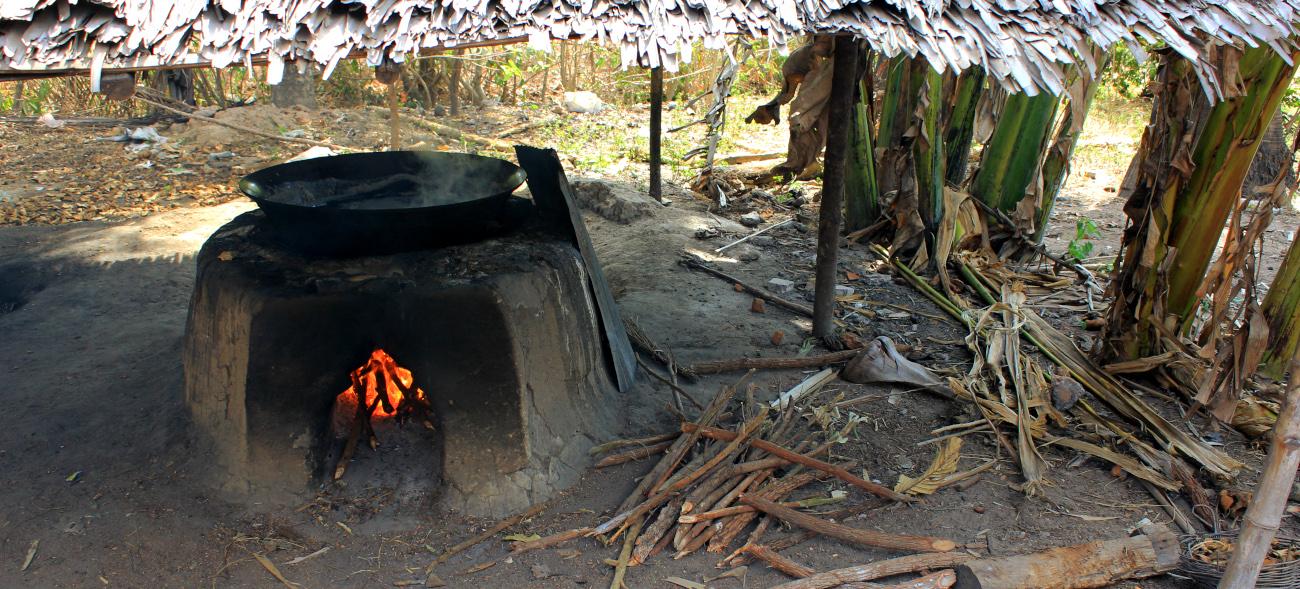 Amélioration de la production traditionnelle de sucre de palme