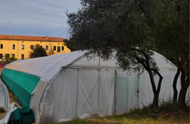 Serre bioclimatique Marseille Geres