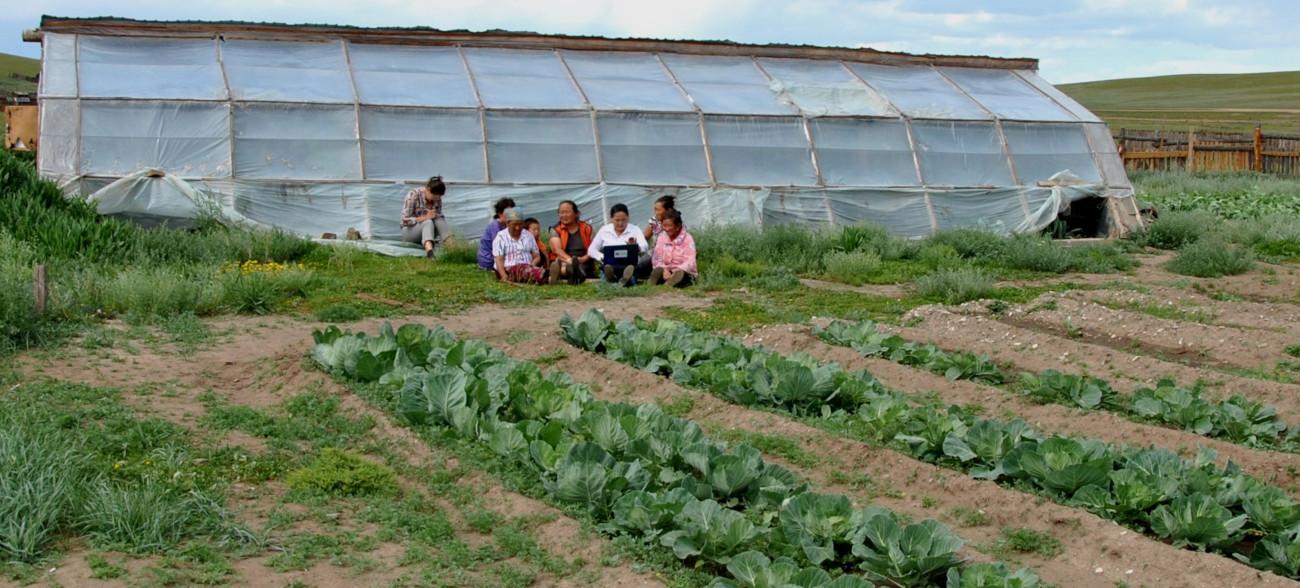 Autosuffisance agricole et alimentation équilibrée pour les populations rurales de l'Arkhangaï