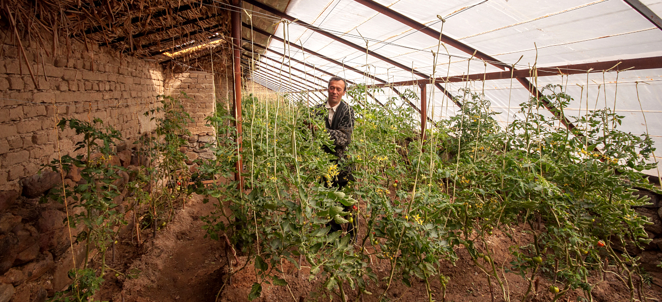 Bioclimatic houses and support for agricultural development in Tajikistan