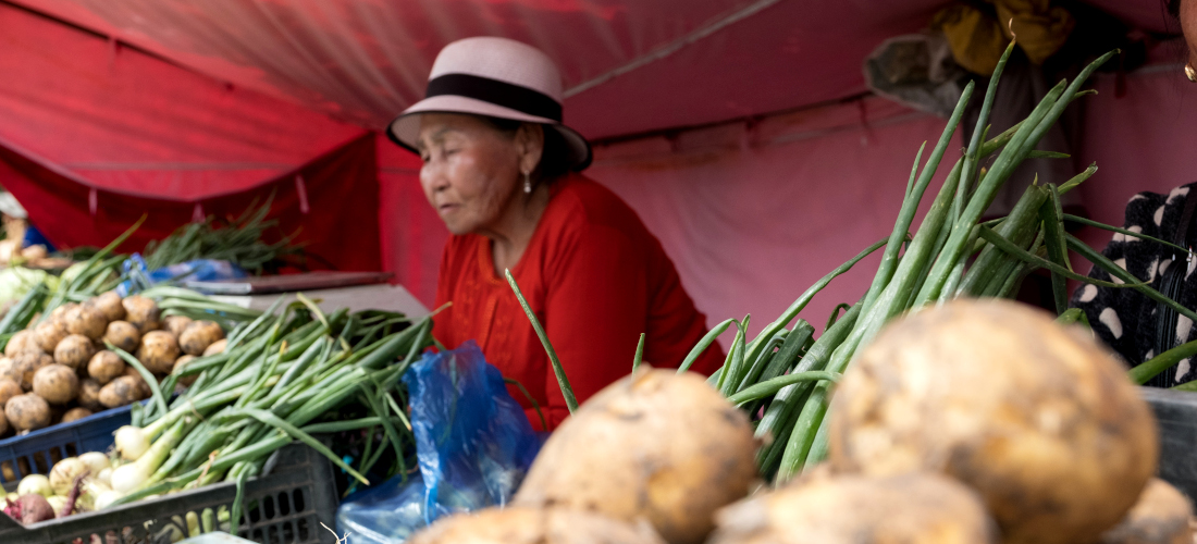 Promoting the role of women in rural economic development in Mongolia