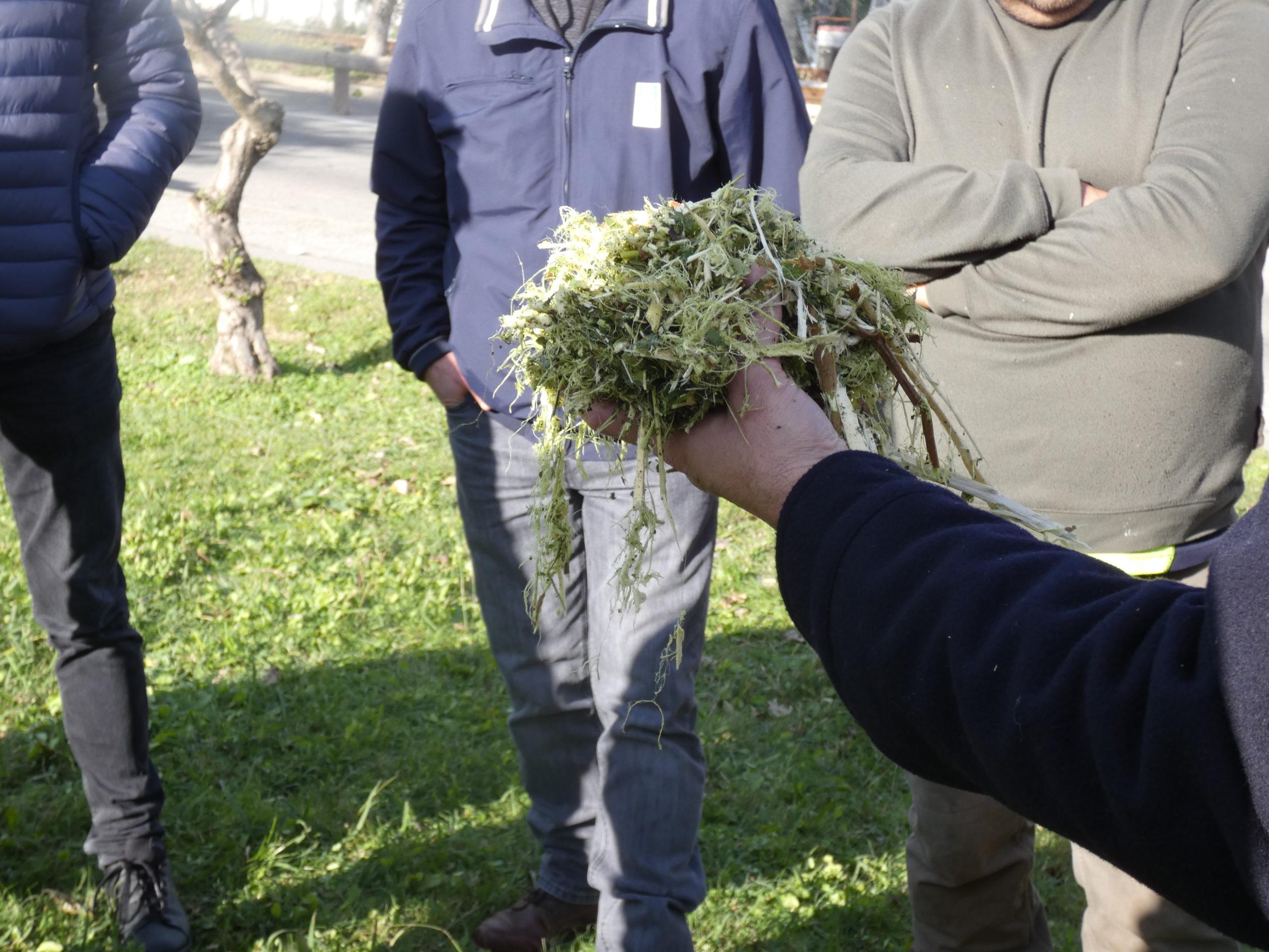 Opération sensibilisation au broyage des déchets verts à Carry-le-Rouet : nous vous attendons nombreux·ses !