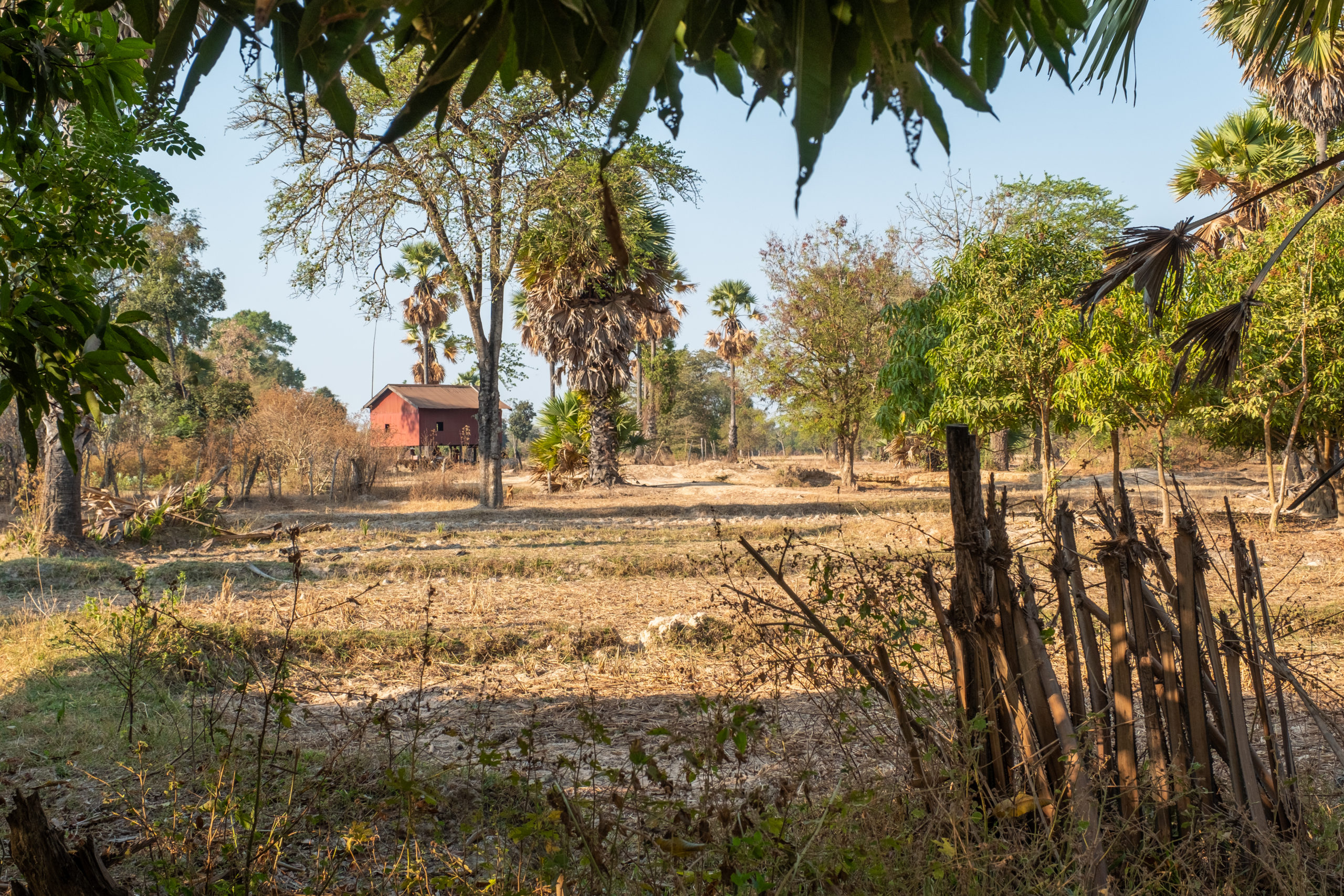 Villages cambodia forest resource