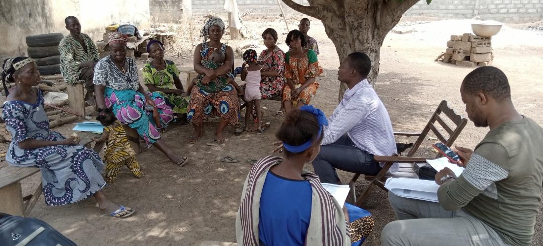 Création d'emplois et préservation des forêts, décryptage des enjeux au Bénin